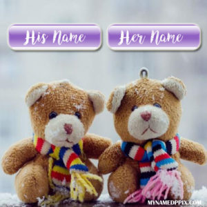 Write His And Her Name Couple Teddy Pictures