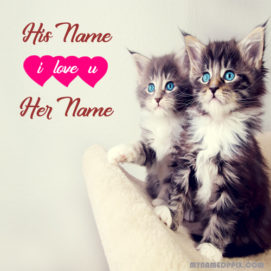 Write Lover Name Cute Cats Profile Image