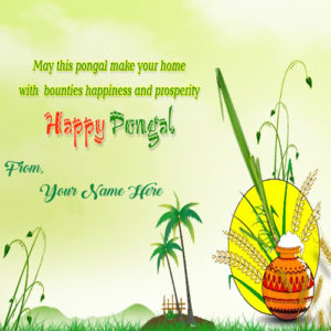 Quotes SMS Pongal Wishes Name Write Image Sent Free