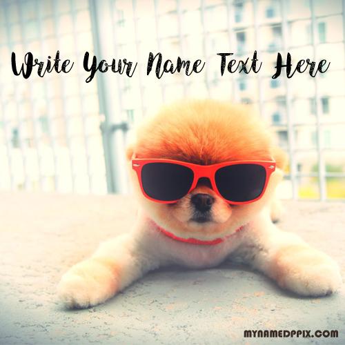 Write Name Profile Cute Dog Image Status Name Edit