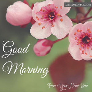 Write Name Good Morning Flowers Greeting Card Images
