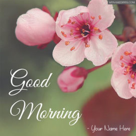 Write Name On Good Morning Wishes Greeting Card Pictures