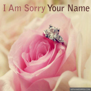 Write Name Sorry Beautiful Rose Greeting Card Images Send
