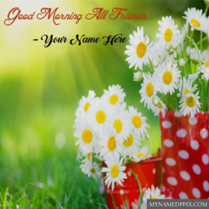 Write Name White Rose Morning Beautiful Greeting Card Create Pictures